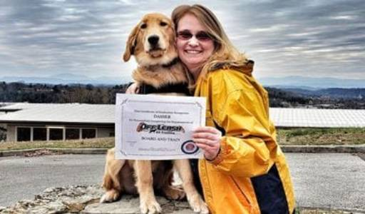 a dog receiving a certificate from a trainer